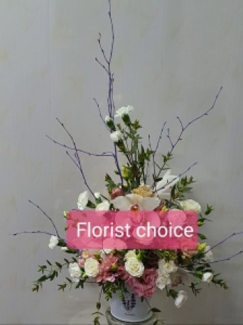 Front facing arrangement