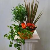 Autumn planted bowl