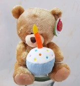 Birthday bear, ADD ON