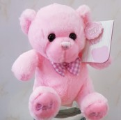 pink add on bear