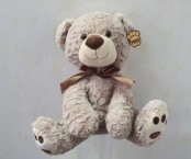 Brown bear 15